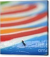 Sticky Rings Of Saturn Canvas Print