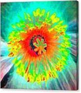 Stigma - Photopower 174 Canvas Print