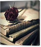 Still Life With Books And Dry Red Rose Canvas Print