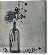 Still Life With Dry Flowers Canvas Print