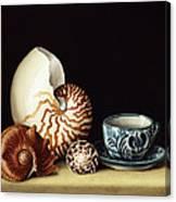 Still Life With Nautilus Canvas Print