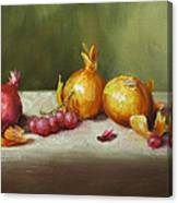 Still Life With Onions And Grapes Canvas Print