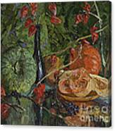 Still Life With Pumpkins And Winter Cherry Canvas Print