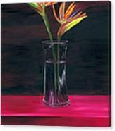 Still Paradise Canvas Print