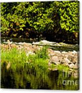 Still Pool And Fast River Canvas Print