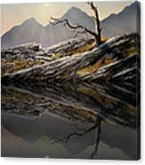 Still Standing Reflections Canvas Print