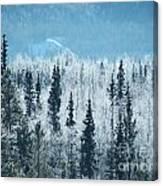Still Valley  Canvas Print