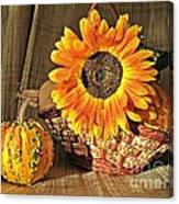 Stillife With  The Sunflower And Pumpkins Canvas Print