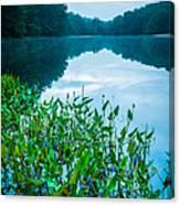 Stillness On Schreeder Pond Canvas Print
