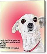 Stitch - A Shelter Sweetie Canvas Print