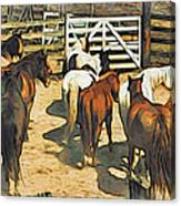 Stockyard Canvas Print