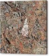 Stone Adornment Canvas Print