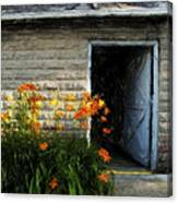 Stone Barn Acanthus Canvas Print