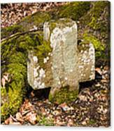 Stone Cross In The Forest Canvas Print