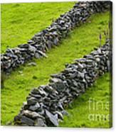 Stone Fences In Ireland Canvas Print