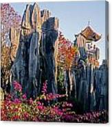 Stone Forest Canvas Print
