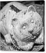 Stone Kitty Canvas Print