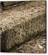 Stone Stairs Fragment Canvas Print