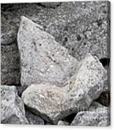 Stone Tooth Canvas Print