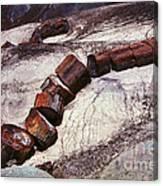 Stone Trees - 336 Canvas Print