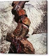 Stone Trees - 337 Canvas Print