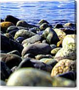 Stones To Admire Canvas Print