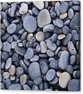 Stoney Grey Soils  Canvas Print