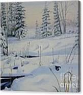 Stoney Swamp Canvas Print
