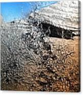 Stony Bush Abstract Canvas Print