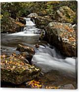 Stony Creek Falls Canvas Print