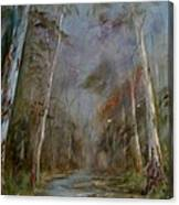 Stony Creek Canvas Print