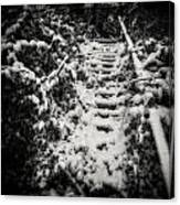 Stony Steps Covered With Snow Canvas Print