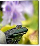 Stop And Smell The Hyacinths Canvas Print