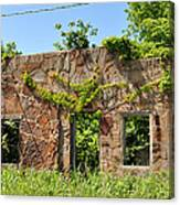 Overgrown Storefront  Canvas Print