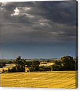 Storm Brewing Over Corn Canvas Print