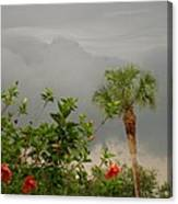 Storm Clouds And Flowers Canvas Print