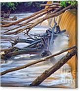 Storm Debris Canvas Print