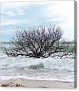 Storm Tide Canvas Print