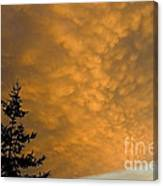 Stormbringer Coming Canvas Print