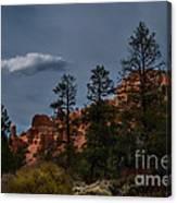 Storms A Comin Canvas Print