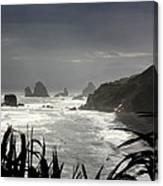 Stormy Coast New Zealand Canvas Print