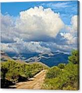 Stormy Day In The Desert Canvas Print
