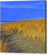 Stormy Walk On The Beach Iv Long Beach Wa Canvas Print