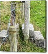Straddle The Fence Canvas Print