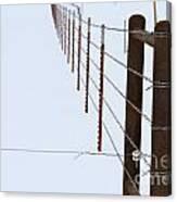 Straight Line Fence Canvas Print