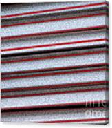 Straw Red Canvas Print