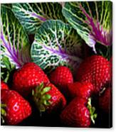 Strawberries And Kale. Canvas Print