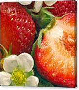 Strawberries And Vanilla Canvas Print