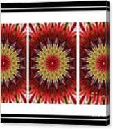 Strawberry Explosion Triptych - Kaleidoscope Canvas Print