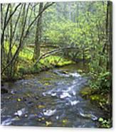 Stream Below Amicalola Falls Canvas Print